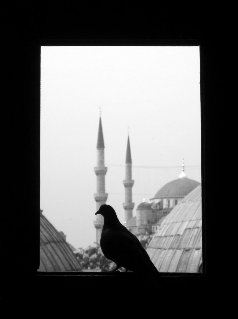 Blue Mosque with Bird, 2005
